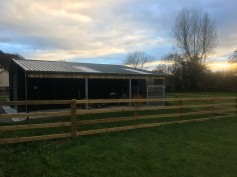5x9x3 Storage shed and dog pen